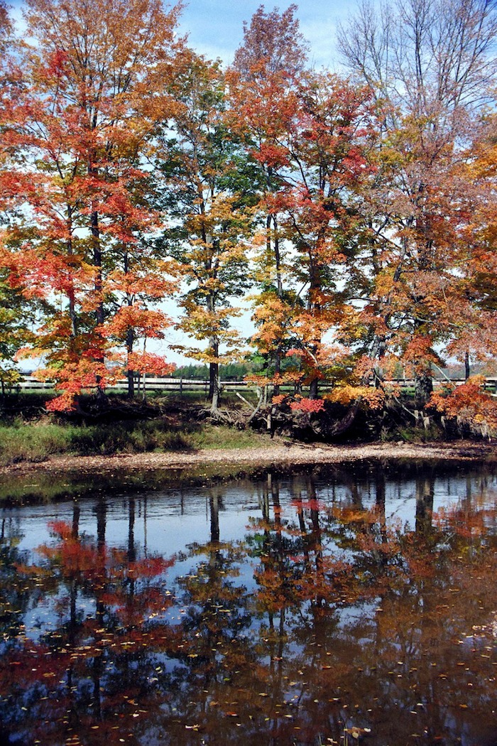 Fall reflections on the Lamington River, NJ